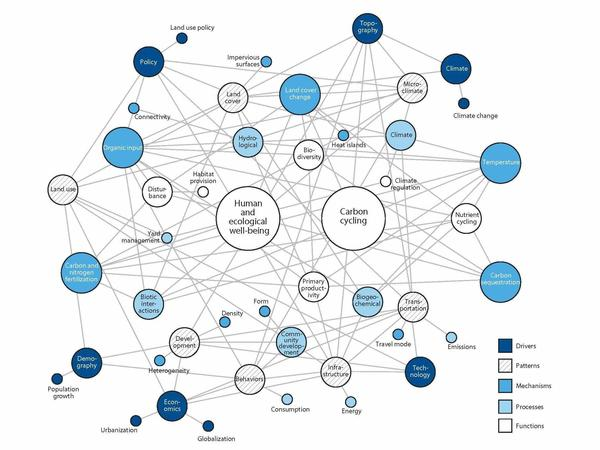 """The complex """"network structure"""" of natural and human interactions in urban ecosystems."""
