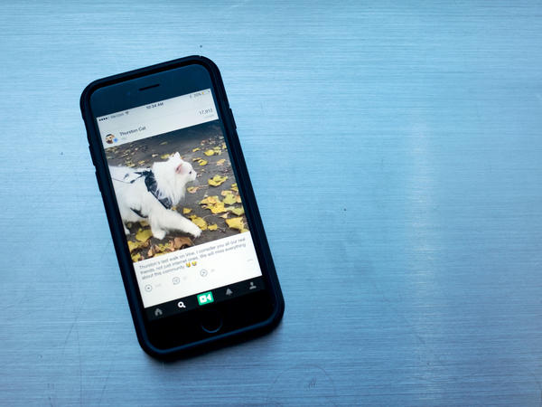 Twitter announced Thursday that it would be discontinuing Vine, a six-second looped social video app.