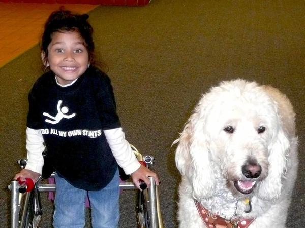 Ehlena Fry, then in kindergarten, stands with her service dog, Wonder.