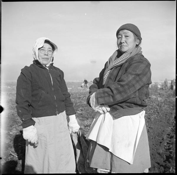 Each of the 10 incarceration camps nationwide had working farms. Many of the Japanese-Americans held there, like the women above, worked as field hands.
