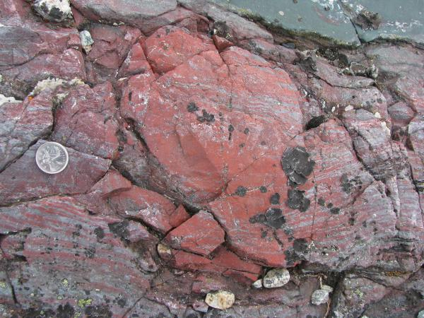A layer of rock from the Nuvvuagittuq Supracrustal Belt, Québec in Canada, contains string-like shapes that could be the remains of life forms from 3.7 billion years ago.