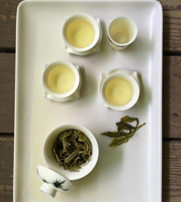 Tea made from Minto Island Tea Co. leaves.