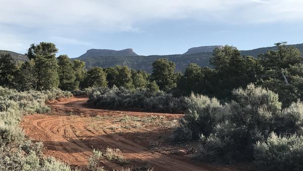 "President Obama designated the Bears Ears National Monument in December. Here, the namesake ""bears ears"" are pictured from Cedar Mesa, in the southeast Utah high desert."