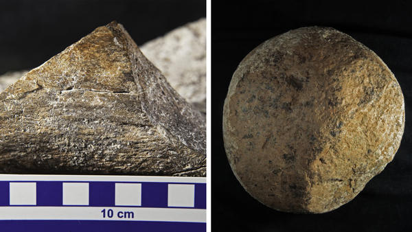 (Left) A close-up view of a spirally fractured mastodon femur. (Right) A boulder discovered at the Cerutti Mastodon site in San Diego County thought to have been used by early humans as a hammerstone.