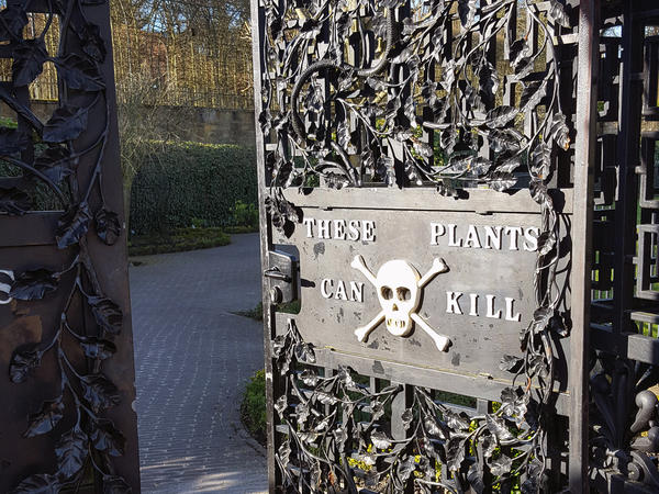 "The elaborate Alnwick Garden in northeast England includes a ""Poison Garden"" that showcases plants with killer properties. Visitors are invited to look but not touch or even smell."