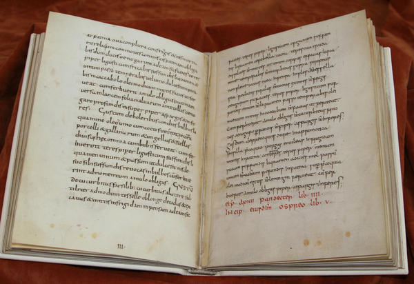 9th-century manuscript <em>De re culininaria</em> (sometimes <em>De re coquinaria</em>), attributed to Apicius.