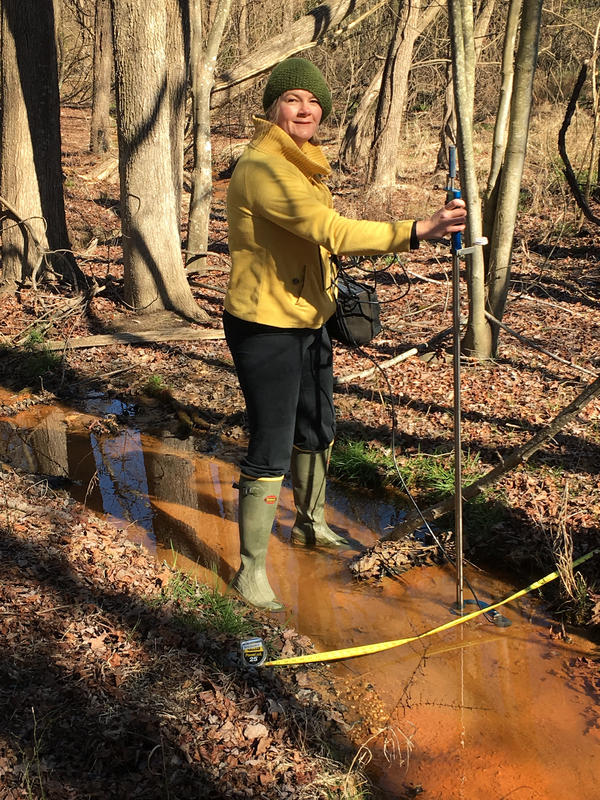 UMCES coastal ecologist Lora Harris heads the research team working on a chemical fingerprint to pinpoint nitrogen pollution from septic tanks.
