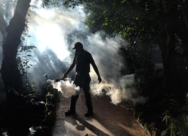 A groundskeeper at Pinecrest Gardens sprays pesticide to kill mosquitoes in Miami-Dade County, Fla., in 2016.