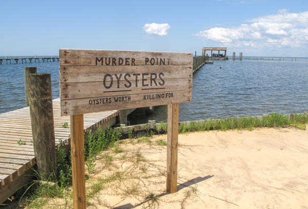 "The Zirlott family's oyster farm is at the end of a long pier in Sandy Bay. Legend has it that the name ""Murder Point"" comes from a deadly dispute over an oyster lease at this site back in 1929."