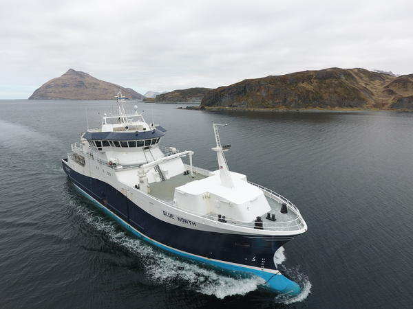 Blue North is a new fishing vessel designed to catch Pacific cod using a Seafood Watch granted catch method. It also utilizes a stun table to render fish unconscious before processing.