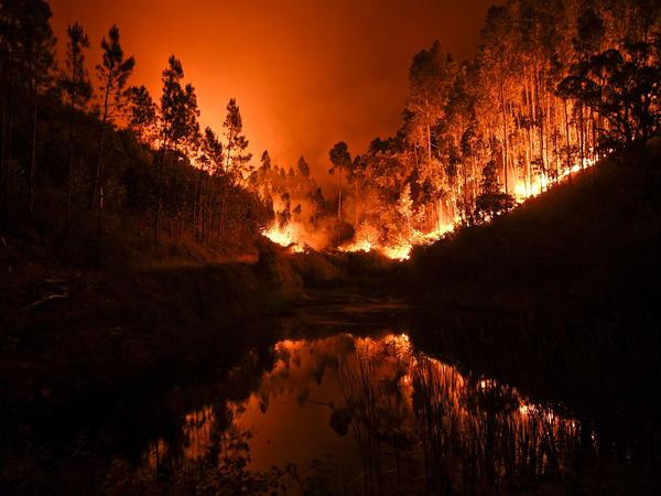 """A stream in Penela reflects the wildfire raging in central Portugal on Sunday. The fire, which has killed dozens of people, is """"the worst tragedy in terms of human lives that we've known in recent years."""""""