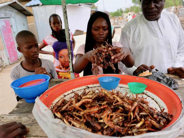 Margaret Joseph sells grasshoppers to Ado Garba at her stall in the Maiduguri market.