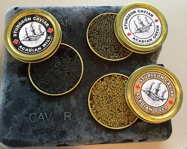 Acadian Sturgeon and Caviar markets three types of caviar, one from the wild Acadian sturgeon, and two types — green and gold — from its farmed shortnose sturgeon.