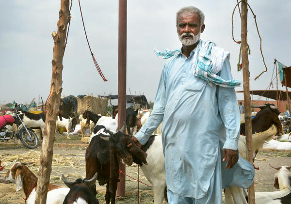 Ghulam Siddique, a goat herder from Pakistan's Sindh province, has been forced to increase the price of his goats to offset the rising cost of the animals' feed.