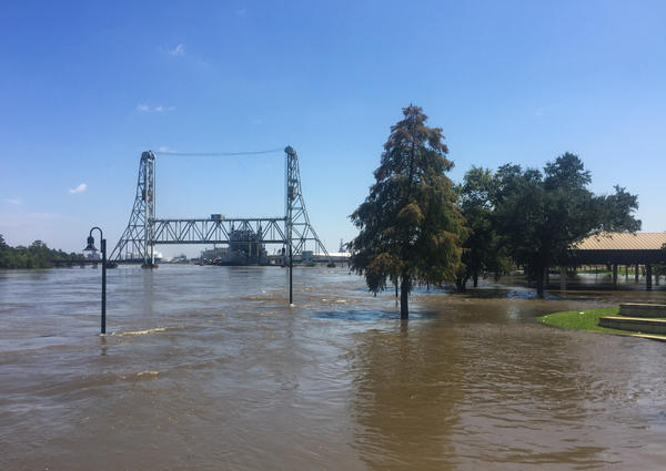 The Neches River is overflowing its banks in downtown, Beaumont, Texas. The river has flooded this city's water system — with no clear timetable of when the pumps will be repaired.