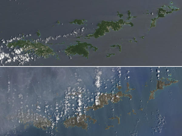 Two natural-color images provided by the NASA Earth Observatory depict the U.S. and British Virgin islands: The top image shows the verdant islands prior to the passage of Hurricane Irma; the bottom image shows the brown the storm left behind after uprooting and wrecking much of the island chain.