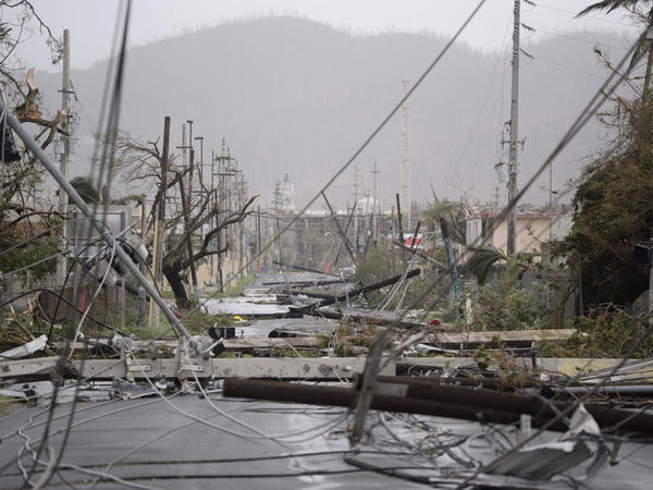 Electricity poles and power lines toppled by Hurricane Maria are seen in Humacao, Puerto Rico, Wednesday. The storm left the island without electricity service, officials say.