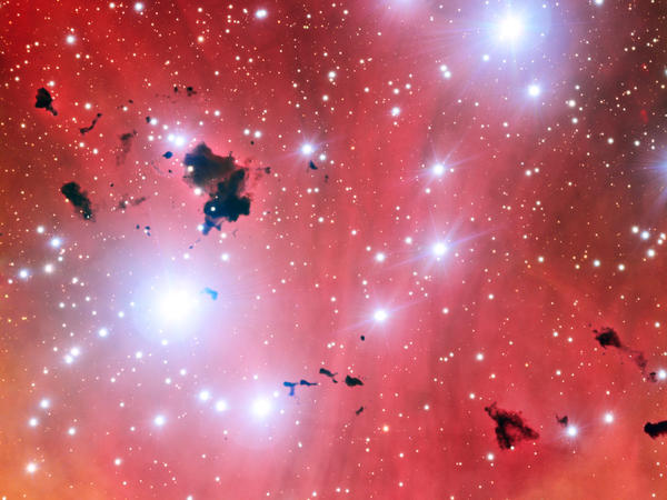 This view of a stellar nursery taken by the Very Large Telescope on May 23, 2013,  also shows a group of thick clouds of dust known as the Thackeray globules silhouetted against the pale pink glowing gas of the nebula.