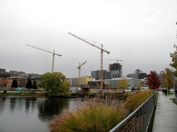 Cranes poke out of the ground in Seattle's South Lake Union neighborhood, the heart of Amazon's headquarters.