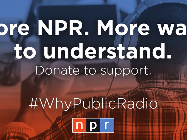 NPR Year-End Campaign