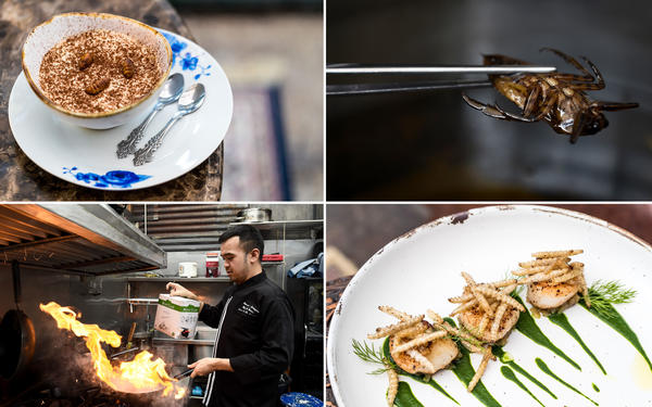 Clockwise from upper left: Silkworm tiramisu. An edible water beetle. Bamboo caterpillars over grilled scallops and puréed Jerusalem artichokes. Chef Thitiwat Tantragarn splashes white wine over insects.