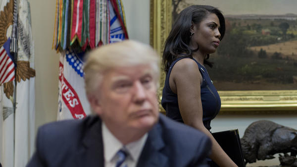 Omarosa Manigault Newman was cast as a villain in <em>The Apprentice</em> by Donald Trump, who then brought her to the White House.