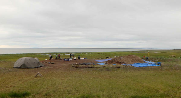 Beneath the green grass of the Rising Whale Site lie the remnants of an ancient seaside village.