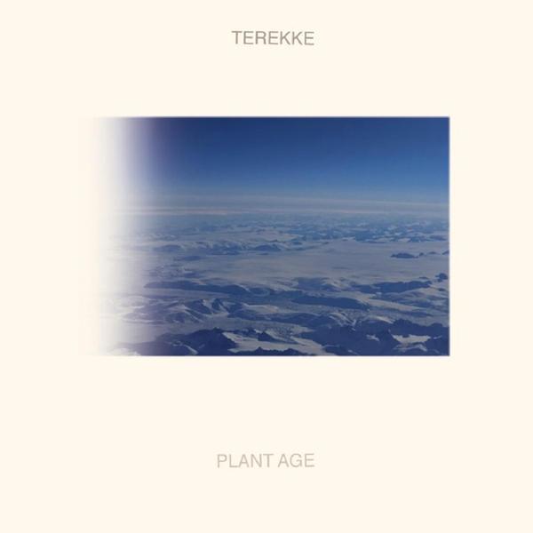Terekke, <em>Plant Age</em>.