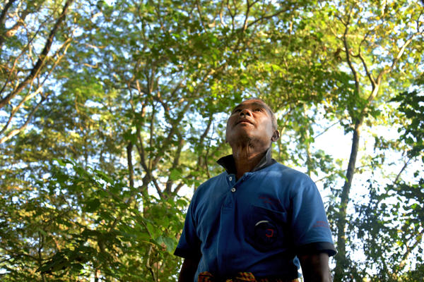 "Jadav Payeng, ""The Forest Man of India,"" has planted tens of thousands of trees over the course of nearly 40 years. He has made bloom a once desiccated island that lies in the Brahamputra river, which runs through his home state of Assam."