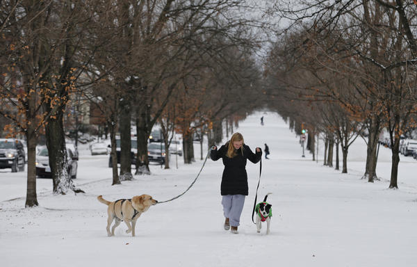 Katherine Reid walks her dogs on the snow covered median in Richmond, Va., on Thursday. A massive winter storm swept from the Carolinas to Maine on Thursday, dumping snow along the coast.