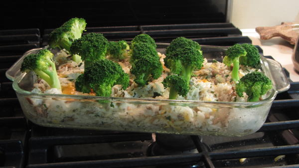 Mollie Katzen, who wrote <em>The Moosewood Cookbook</em>, invented The Enchanted Broccoli Forest, a cheesy brown rice casserole topped with broccoli spears standing upright in the pan to resemble trees.