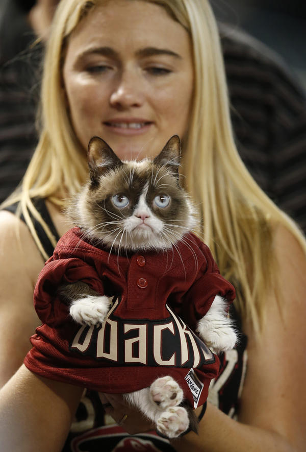 Owner Tabatha Bundesen holds Grumpy Cat, an Internet celebrity cat whose real name is Tardar Sauce, before a 2015 baseball game between the Arizona Diamondbacks and the San Francisco Giants.
