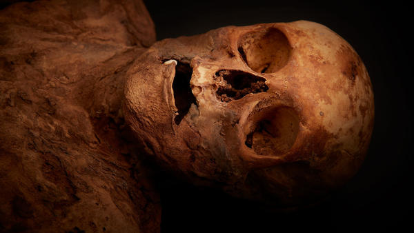 The mummy, now identified as Anna Catharina Bischoff, was discovered in 1975. But it appears that wasn't the first time it was unearthed; researchers now believe the body was also found in 1843.