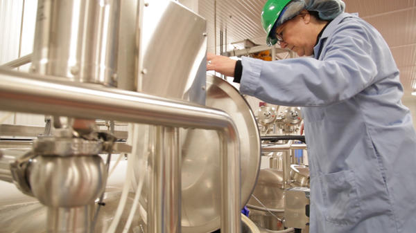 Cheryl Mitchell, shown here at the Elmhurst Milked plant in  Elma, N.Y., spent years developing a process to create a plant-based milk that had as much protein as its dairy counterpart.