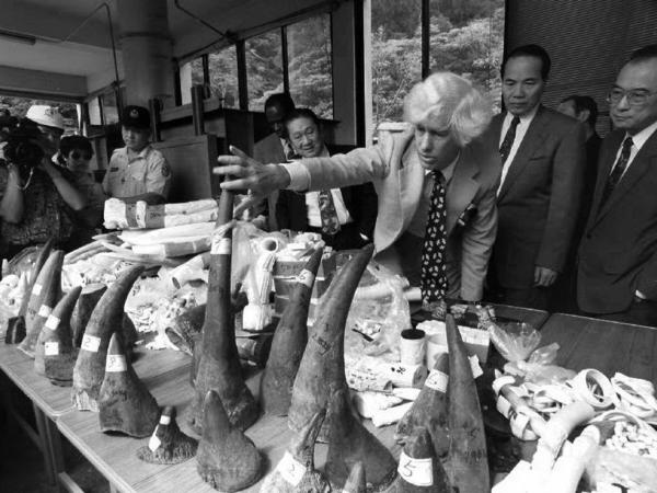 Bradley Martin is seen here in 1993 inspecting confiscated rhino horns, elephant tusks and ivory objects at the Taipei Zoo, in his role as a United Nations special envoy on rhino conservation.