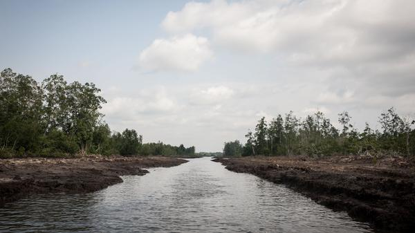 A water way in the Niger Delta, photographed on June 8, 2016. The oil-rich Delta region in Nigeria was, at the time, experiencing the rise of a new militant group vowing to cripple the economy.