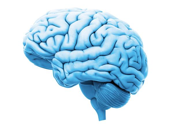 The scientists tested tissue samples from the brains of deceased patients who had from autism, schizophrenia and bipolar disorder.