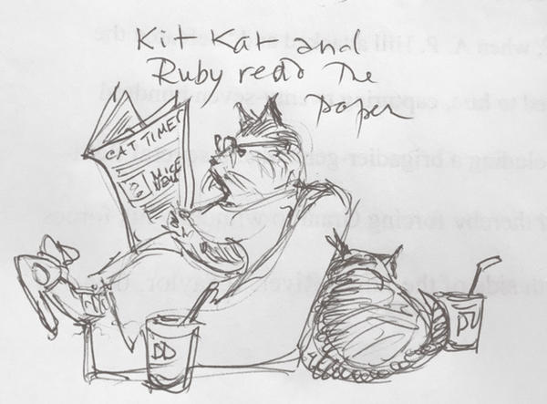 Kit Kat and Ruby read the paper.