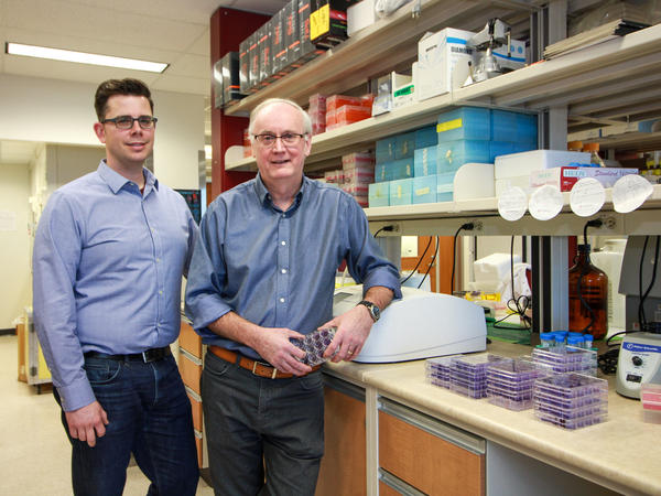 University of Alberta microbiologist David Evans (right) and his research associate Ryan Noyce, created the synthetic horsepox virus.