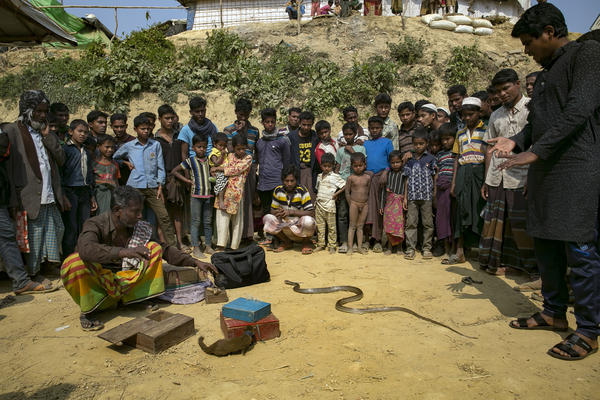 With his snake-and-weasel show, a Bengali herbal medicine salesman (far right, in black tunic) draws a crowd at the Kutupalong refugee camp.