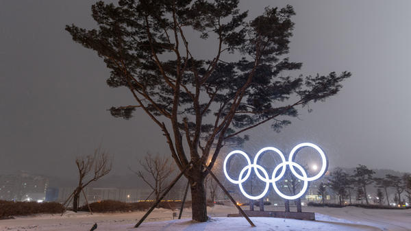 A support structure braces a tree for the strong Siberian winds in Pyeongchang during the 2018 Winter Olympic Games.
