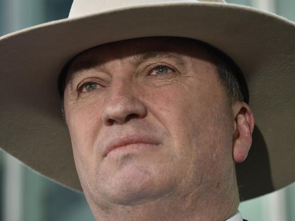Deputy Prime Minister Barnaby Joyce speaks to the media last week in Canberra, Australia.