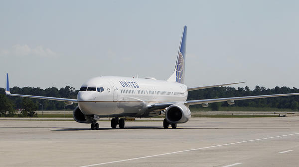 A dog died aboard a United Airlines flight from Houston to New York's LaGuardia airport, prompting questions and outrage.
