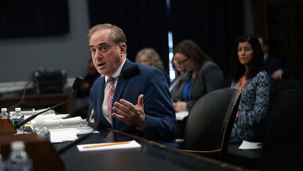 Veterans Affairs Secretary David Shulkin testifies during a U.S. House hearing on March 15. Shulkin has been criticized for taking his wife along on a 2017 official trip to Europe.