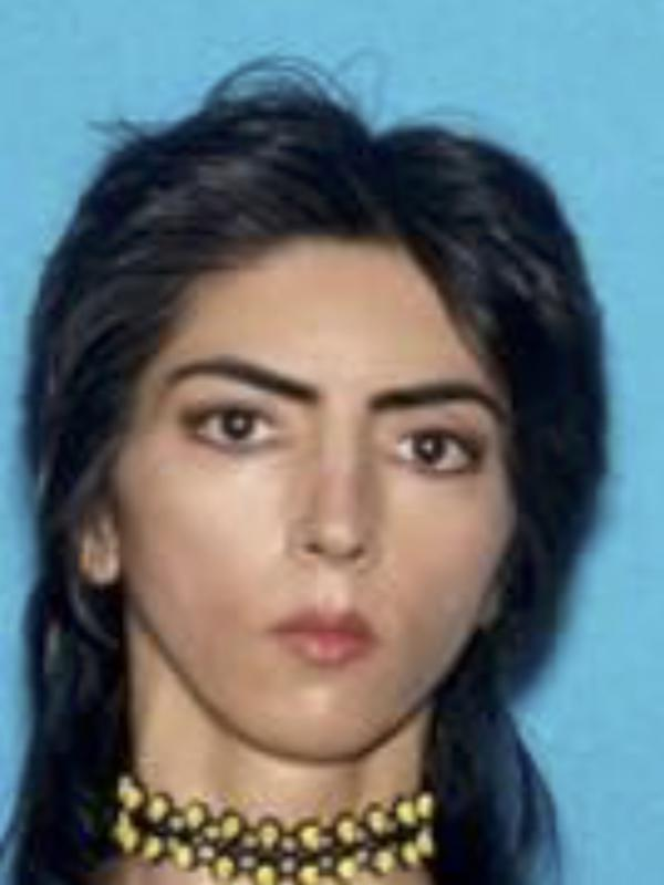 A photo provided by the San Bruno Police Department shows Nasim Aghdam. Law enforcement officials have identified Aghdam as the person who opened fire with a handgun, on Tuesday at YouTube headquarters in San Bruno, Calif.