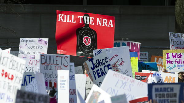 Gun control supporters held up many signs but had one message at last month's March for Our Lives rally in Washington, D.C.