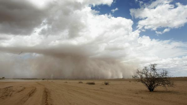 A dust storm moves across the barren plains of northern Kenya in March 2006. Viruses are swept up into the atmosphere via dust storms and ocean spray, and then fall back down to the surface.
