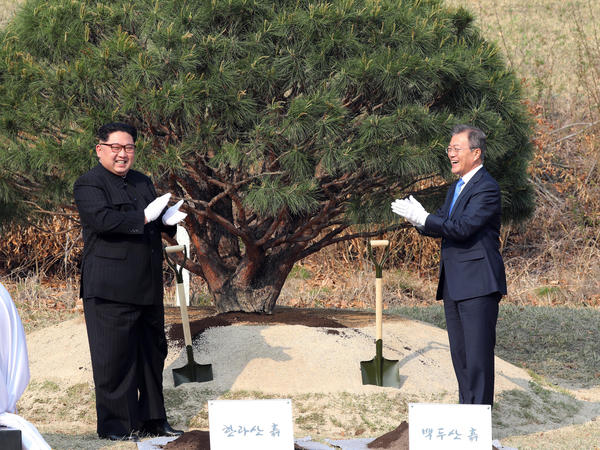 Kim and Moon attend a tree-planting ceremony Friday.