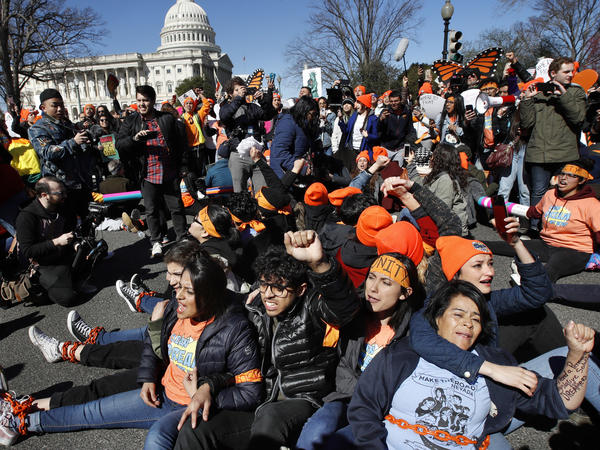 Supporters of the Deferred Action for Childhood Arrivals program participate in civil disobedience on Capitol Hill in March.