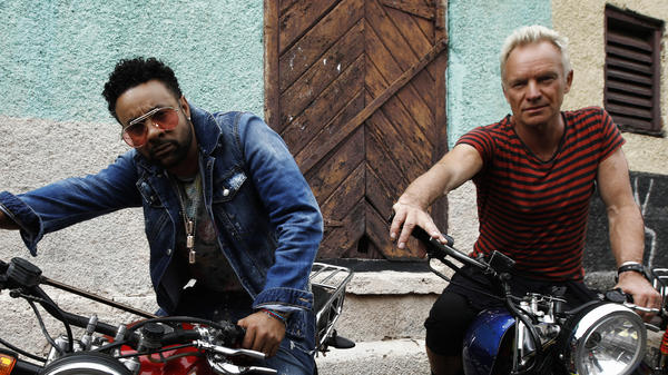 """I think surprise is always the most important element in all music,"" Sting says of his and Shaggy's new album <em>44/876</em>."